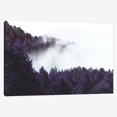 Mystery Fog Canvas Print #UMA930} by 83 Oranges Canvas Print