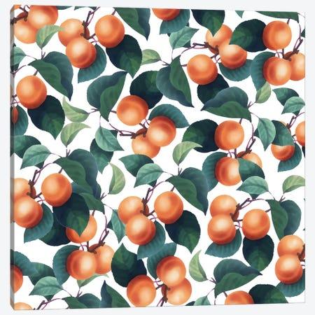 Tropical Fruit Canvas Print #UMA946} by 83 Oranges Canvas Print