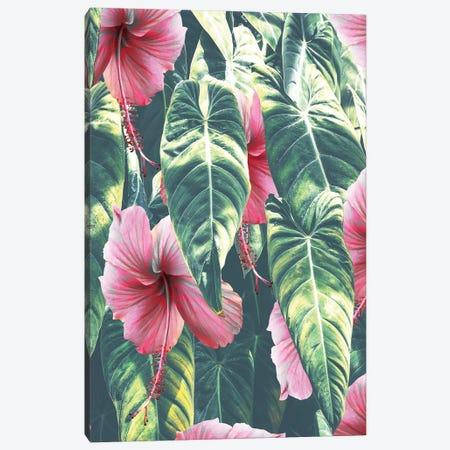 Wild Hibiscus Canvas Print #UMA964} by 83 Oranges Canvas Art Print