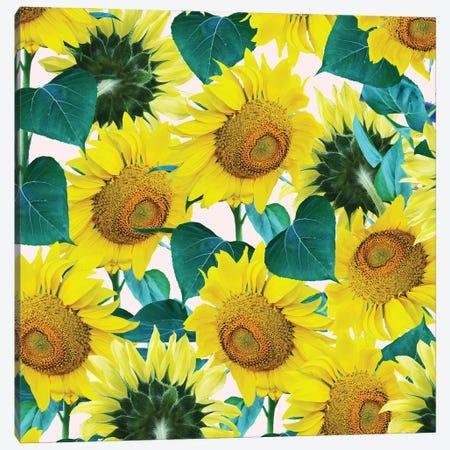 Sunflower Canvas Print #UMA971} by 83 Oranges Canvas Art Print