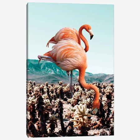 Flamingos In The Desert Canvas Print #UMA974} by 83 Oranges Canvas Art