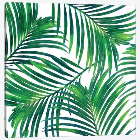Palm Paradise Canvas Print #UMA979} by 83 Oranges Art Print