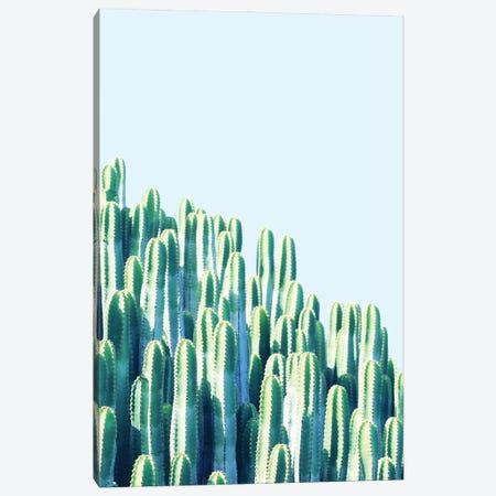 Cactus By The Sea Canvas Print #UMA998} by 83 Oranges Canvas Print