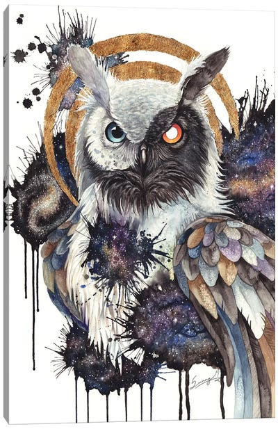 Guardian Of The Galaxies Canvas Art Print
