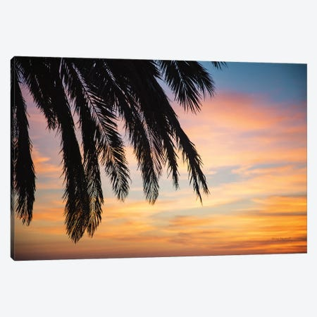 Sunset Palms I Canvas Print #URA2} by Laura Marshall Art Print