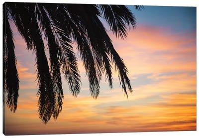 Sunset Palms I Canvas Art Print