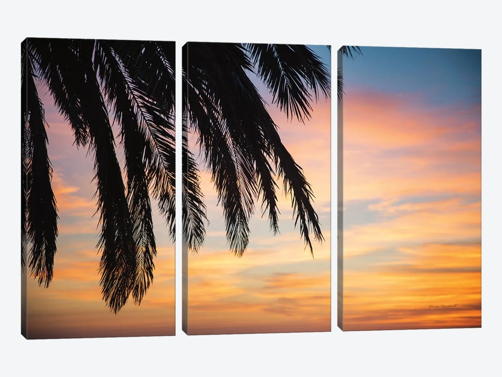 Sunset Palms I by Laura Marshall 3-piece Canvas Wall Art