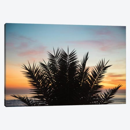 Sunset Palms II Canvas Print #URA3} by Laura Marshall Art Print