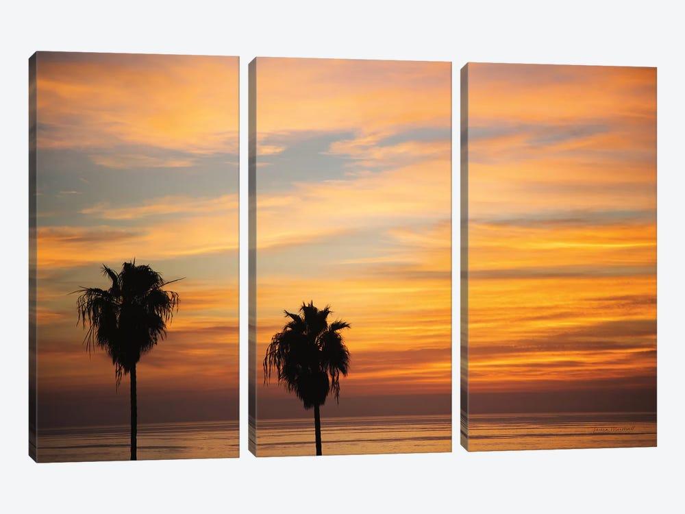 Sunset Palms III by Laura Marshall 3-piece Canvas Art