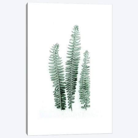 Tender Leaves I Canvas Print #URE230} by Urban Epiphany Canvas Artwork
