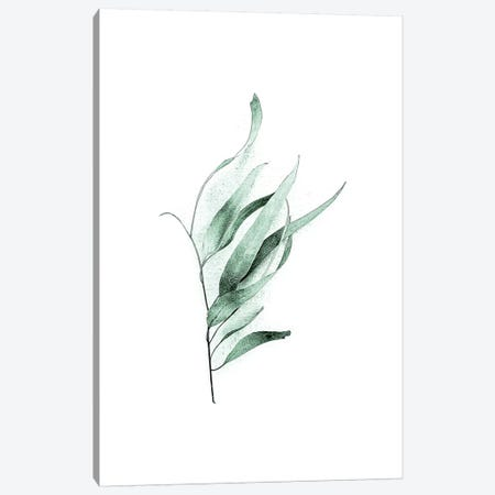 Tender Leaves II Canvas Print #URE231} by Urban Epiphany Canvas Wall Art