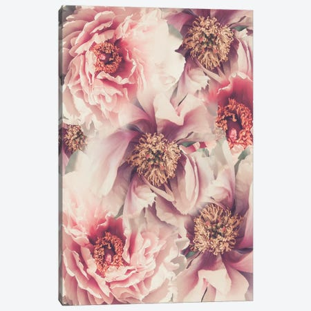 Vintage Peonies III Canvas Print #URE244} by Urban Epiphany Canvas Artwork
