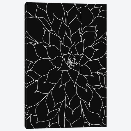 Black White LinedSucculents III Canvas Print #URE290} by Urban Epiphany Canvas Art