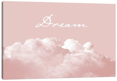Blush Pink Dream Canvas Art Print