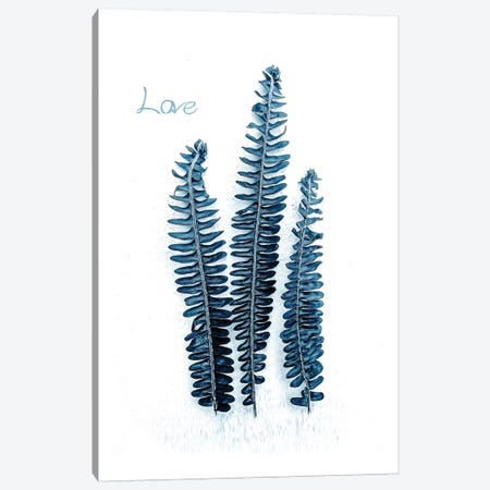 Fern Fronds Baltic Sea, Love 3-Piece Canvas #URE69} by Urban Epiphany Canvas Art