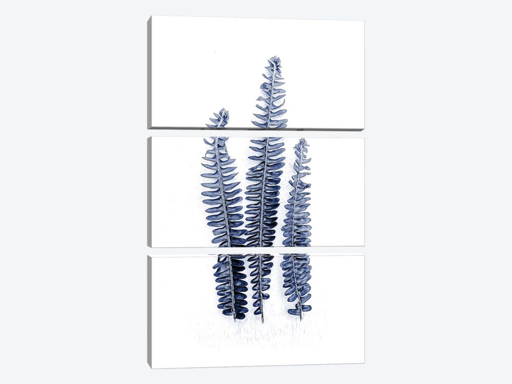 Fern Fronds Navy by Urban Epiphany 3-piece Canvas Art