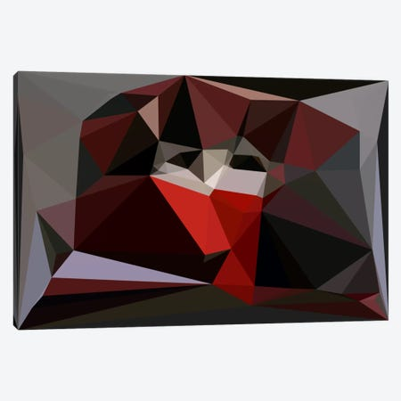 The Mask Canvas Print #USL82} by The Usual Designers Canvas Wall Art