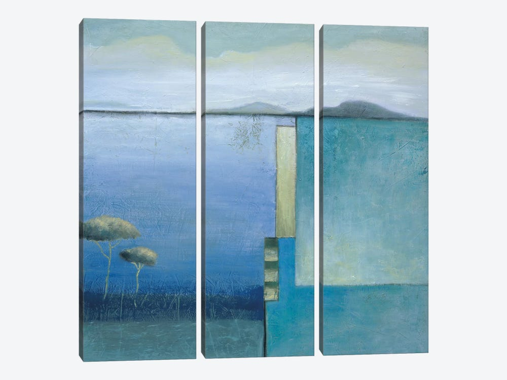 Dual Vision II by Ursula Salemink-Roos 3-piece Canvas Art Print