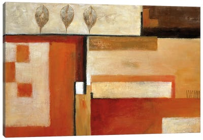 Tapestry Of Summer II Canvas Art Print