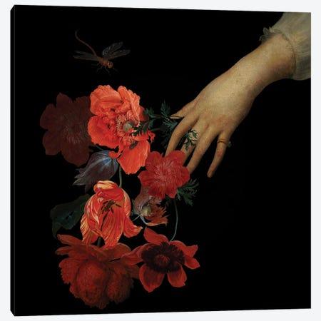 Jan Davidsz De Heem Hand With Poppy Flowers II Canvas Print #UTA126} by UtArt Canvas Wall Art