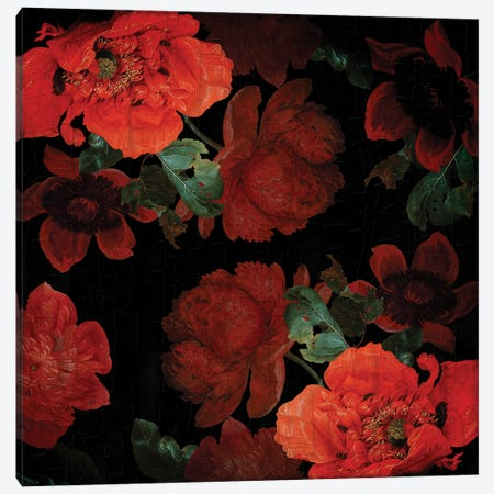 Jan Davidsz De Heem Vintage Poppies Canvas Print #UTA127} by UtArt Canvas Wall Art