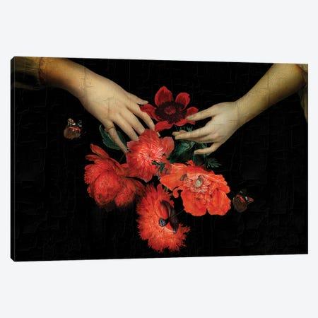 Jan Davindsz De Heem Hands Holding Bouquet Of Poppies Canvas Print #UTA130} by UtArt Canvas Art