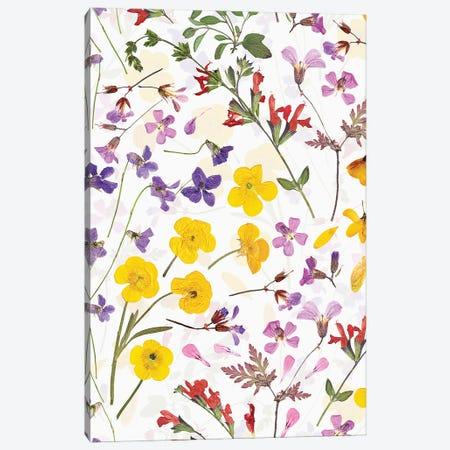 Real Dried Scandi Midsummer Flowers Canvas Print #UTA199} by UtArt Canvas Wall Art