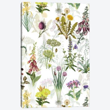 Vintage Pharmacy Flowers Meadow Canvas Print #UTA226} by UtArt Canvas Art Print