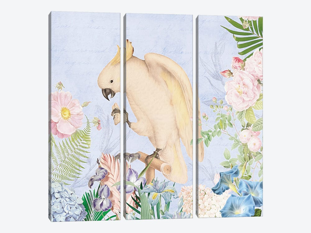 White Parrot In Flower Jungle by UtArt 3-piece Art Print