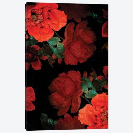 Antique Dutch Vintage Poppies Garden Canvas Print #UTA29} by UtArt Canvas Artwork