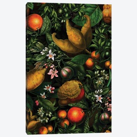 Antique Lemons Garden Canvas Print #UTA35} by UtArt Canvas Artwork