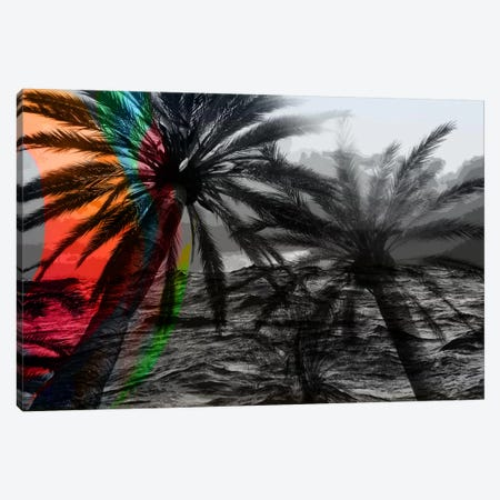 Rainbow in the Storm Canvas Print #UVP21a} by Unknown Artist Art Print
