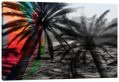 Rainbow in the Storm Canvas Art Print