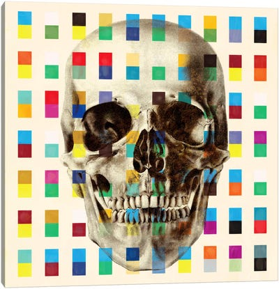 White Skull Cubes Canvas Art Print