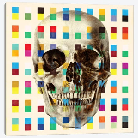 White Skull Cubes Canvas Print #UVP24a} by Unknown Artist Canvas Wall Art