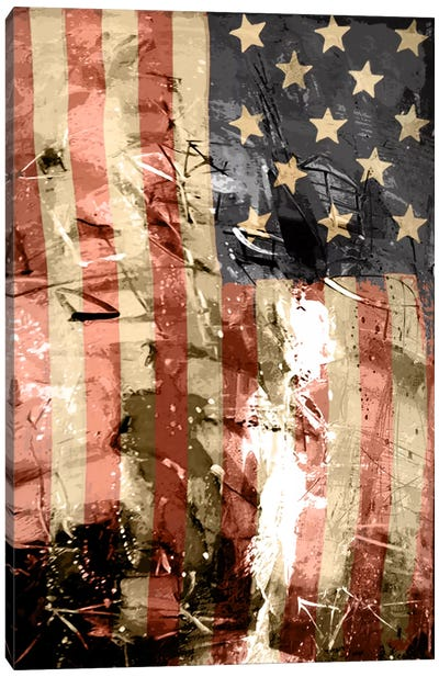 Star Spangled Grafitti Canvas Art Print