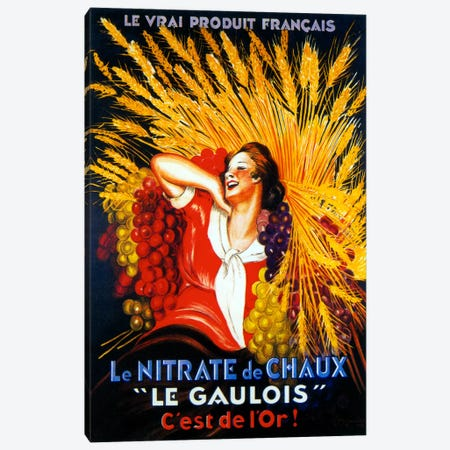 Le Gaulois Canvas Print #VAC1016} by Vintage Apple Collection Canvas Print