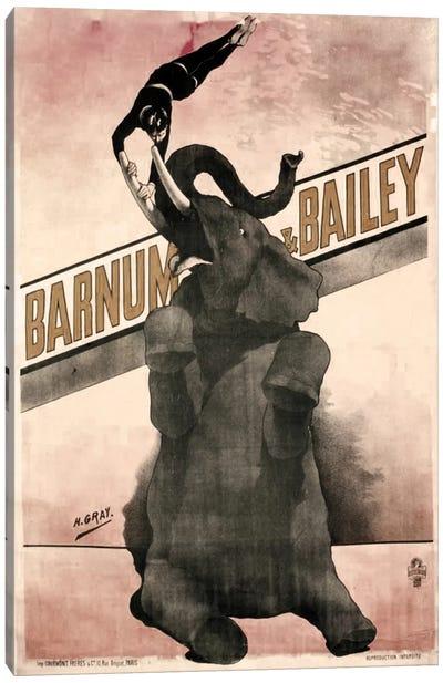 Elephant Gray Barnum & Bailey Canvas Print #VAC1080