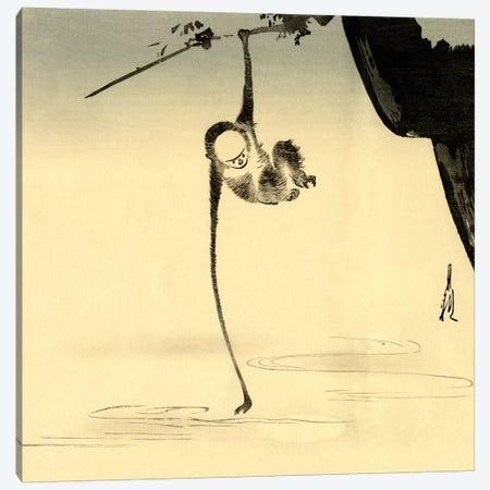 An 64 Monkey Canvas Print #VAC1324} by Vintage Apple Collection Art Print