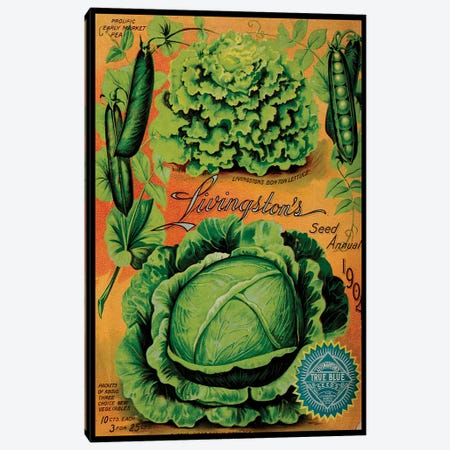 Annual Of True Blue Lettuce, 1902 Canvas Print #VAC1327} by Vintage Apple Collection Art Print