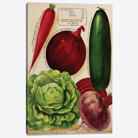 Annual Of True Blue Veggies Canvas Print #VAC1328} by Vintage Apple Collection Canvas Art