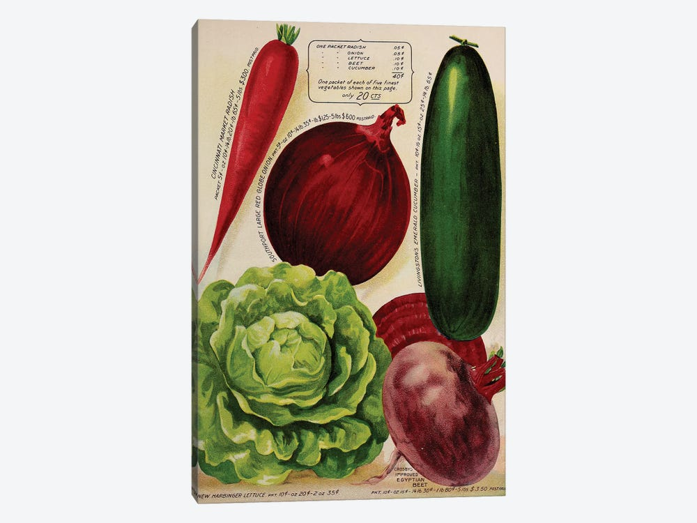 Annual Of True Blue Veggies by Vintage Apple Collection 1-piece Canvas Wall Art