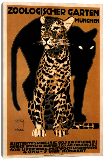 zoo big cats Canvas Art Print