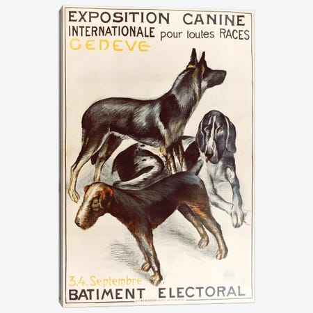 Canine Expo, Geneva Canvas Print #VAC1440} by Vintage Apple Collection Canvas Art Print