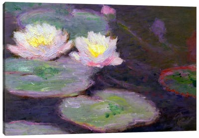 Monet, Crop Water Lilies Canvas Print #VAC144