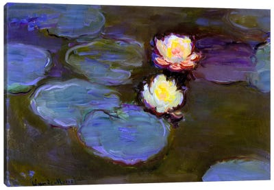 Monet, Water Lily detail_blur Canvas Print #VAC147