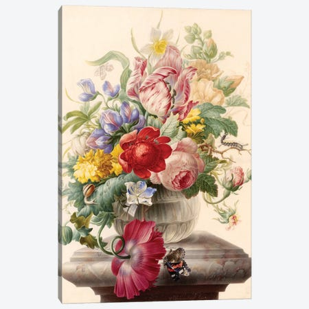 Flowers VII Canvas Print #VAC1600} by Vintage Apple Collection Canvas Print