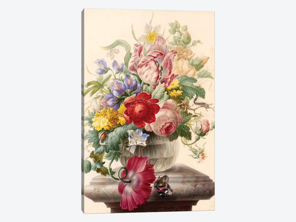 Flowers VII by Vintage Apple Collection 1-piece Canvas Artwork