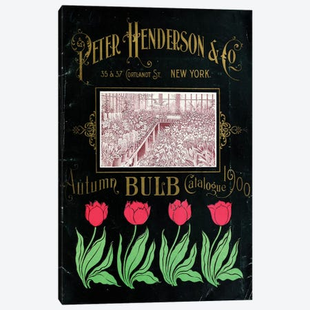 Henderson Tulips Autumn Bulbs Catalogue, 1900 Canvas Print #VAC1700} by Vintage Apple Collection Canvas Art