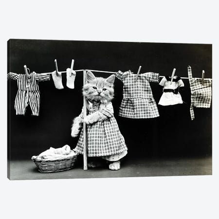 Kitty Laundry Canvas Print #VAC1738} by Vintage Apple Collection Art Print